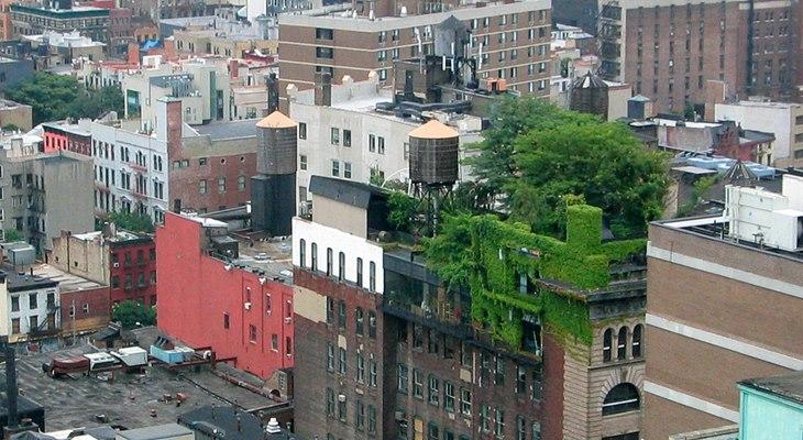 Французы покроют крыши высоток зеленью
