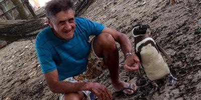 Пингвин каждый год возвращается к своему спасителю за 5000 километров