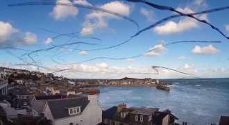 Британец показал на видео траекторию полёта птиц