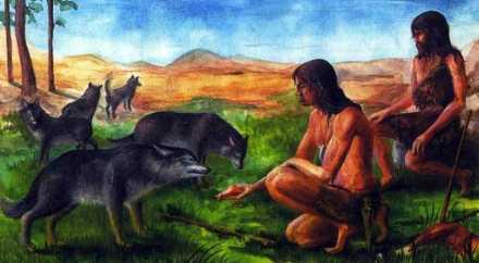 8 тысяч лет назад люди относились к собакам как к равным