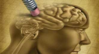 Американцы изобрели таблетку, стирающую память