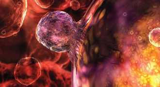 Российские учёные нашли способ лечить рак стволовыми клетками
