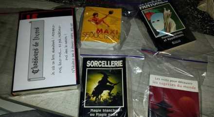 Бельгийцы вместо покемонов охотятся на книги