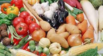 Дачники Петербурга помогут продуктовому снабжению города