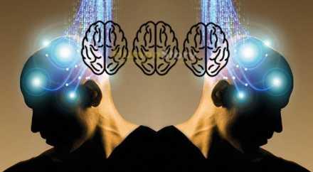 Учёные соединили три мозга в общую компьютерную сеть