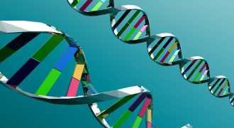 Учёные нашли генетическую мутацию, защищающую от диабета 2 типа