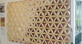 Студент изобрёл чудо-материал, изучая сосновые шишки