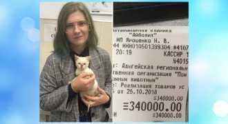 Девушка оплатила долг приюта для животных в треть миллиона