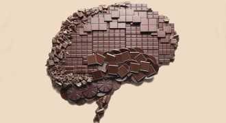 Учёные доказали, что шоколад ускоряет работу мозга