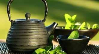 Зелёный чай полезен для памяти