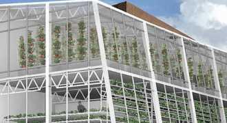 В маленьком городке США создадут первую в мире вертикальную теплицу