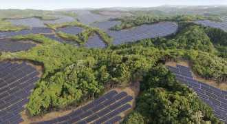 В Японии на заброшенных полях для гольфа построят солнечные электростанции