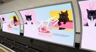 Фотографии кошек заменили рекламу в лондонском метро