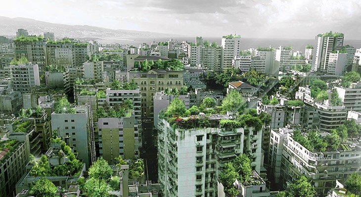 зелень на крыше фото
